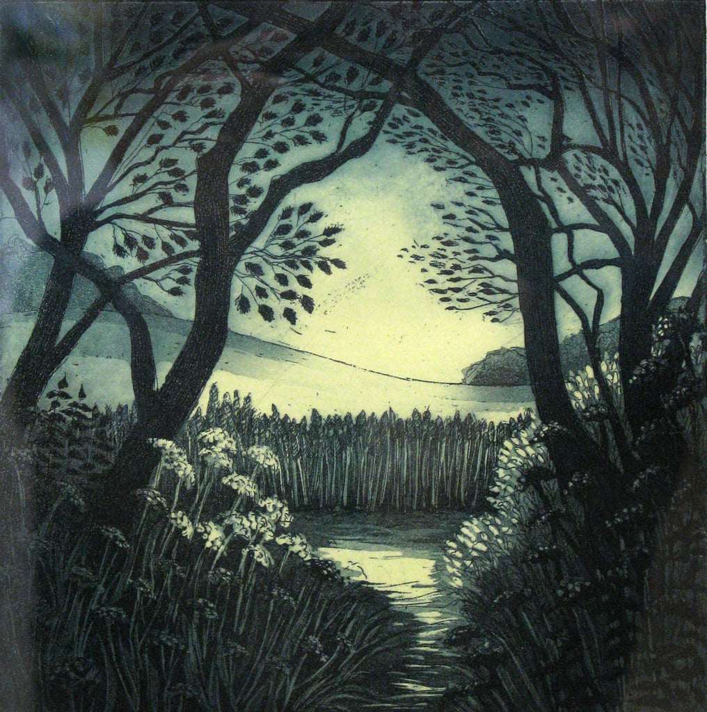 Into the Sunlight, Morna Rhys
