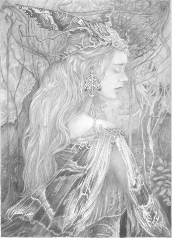 'Moth' Original Pencil Drawing by Ed Org