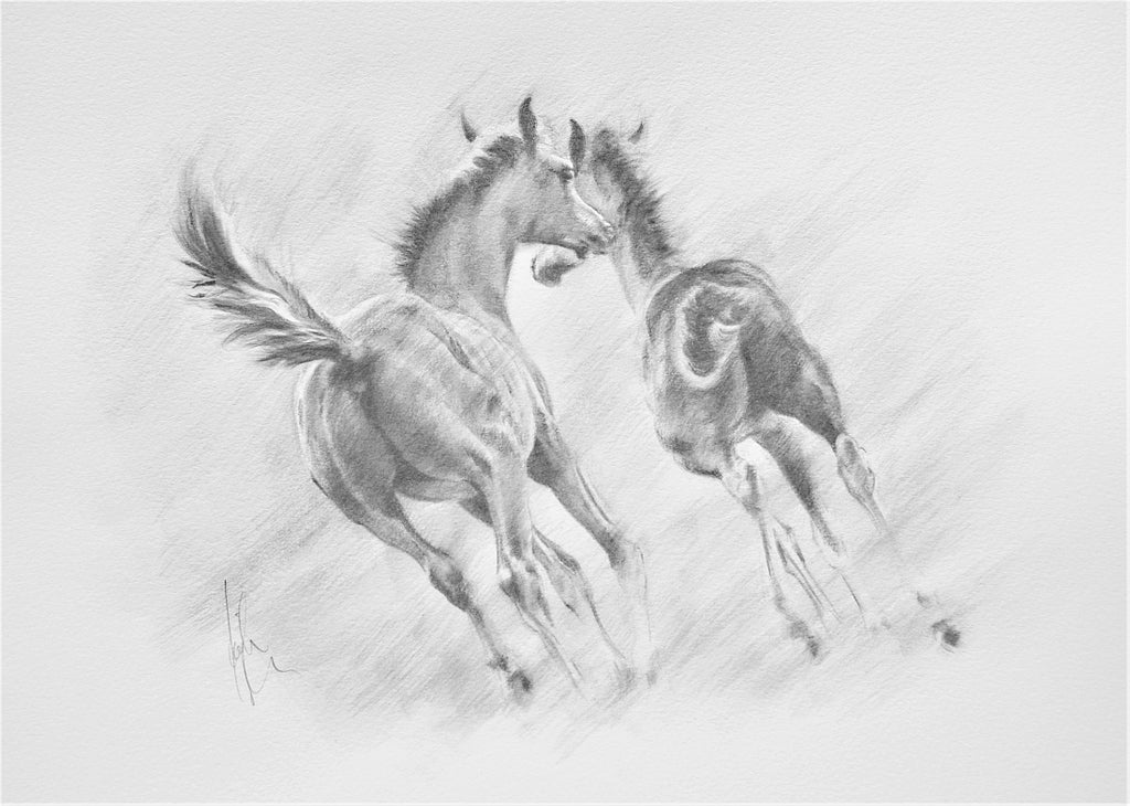 Frolicking - original pencil drawing by Kristine Nason