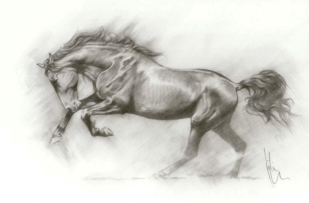 Hign Octane - original pencil drawing by Kristine Nason