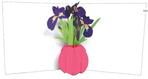 Pop-Up Greetings Card - Iris Vase