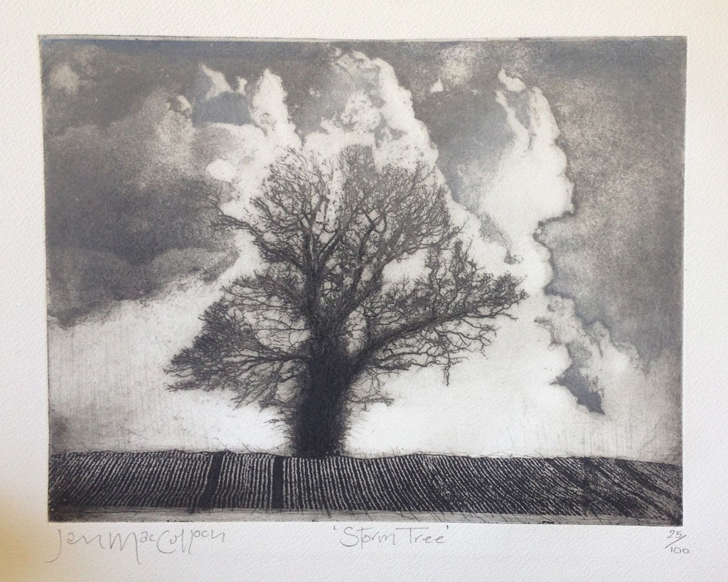 Storm Tree by Ian MacCulloch