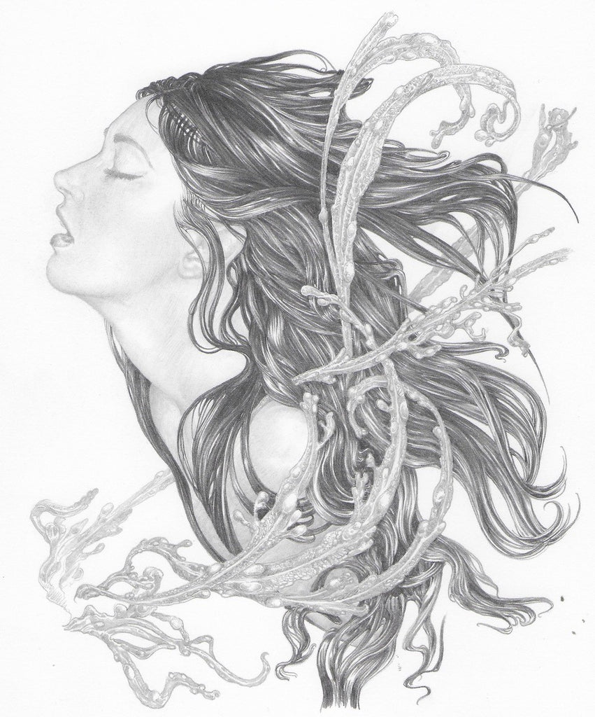 'Study for Siren' Original Pencil Drawing by Ed Org