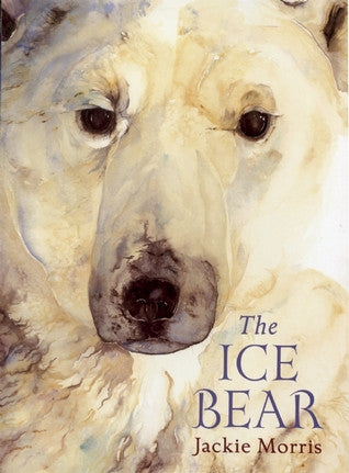 """The Ice Bear"" book by Jackie Morris - signed copy."