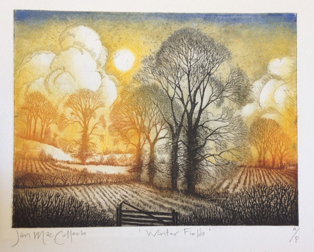 Winter Fields by Ian MacCulloch