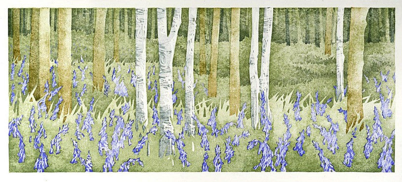 Bluebell Wood, Wet Spring by Laura Boswell
