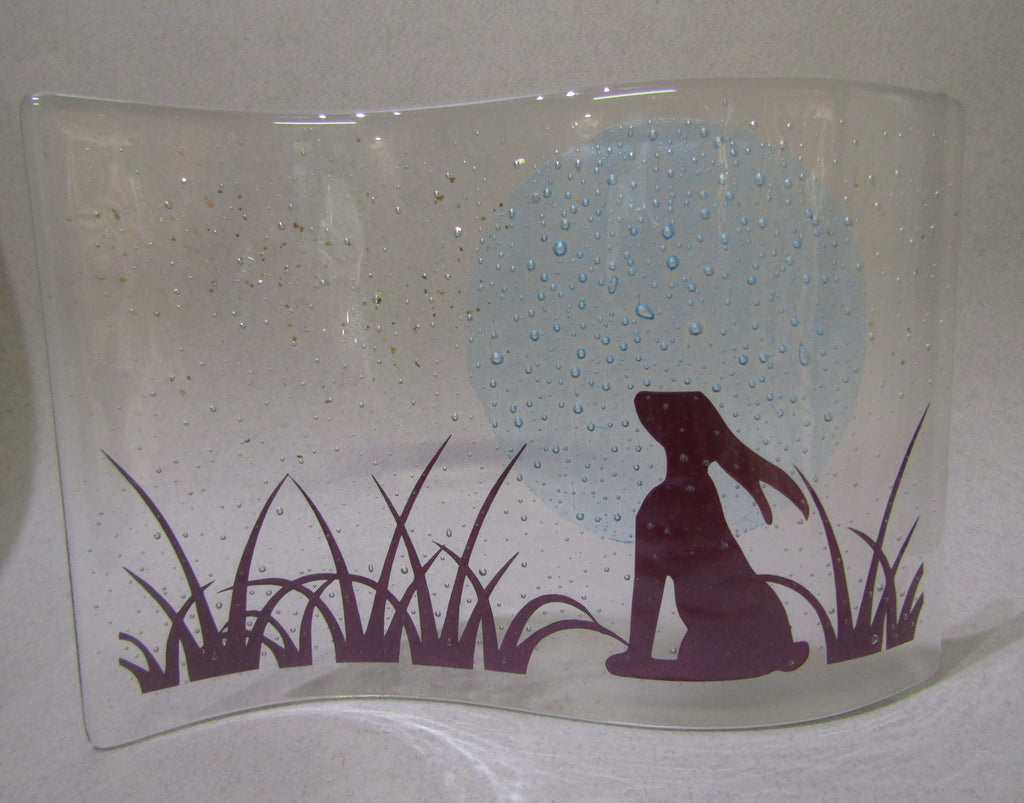 Gazing Hare Wave, Becky Haywood