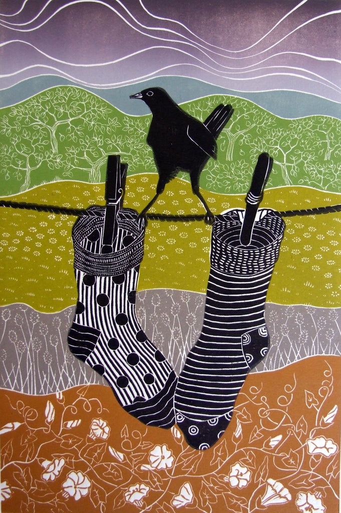 Socks by Diana Ashdown