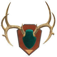 Allen Company Antler Mounting Kit