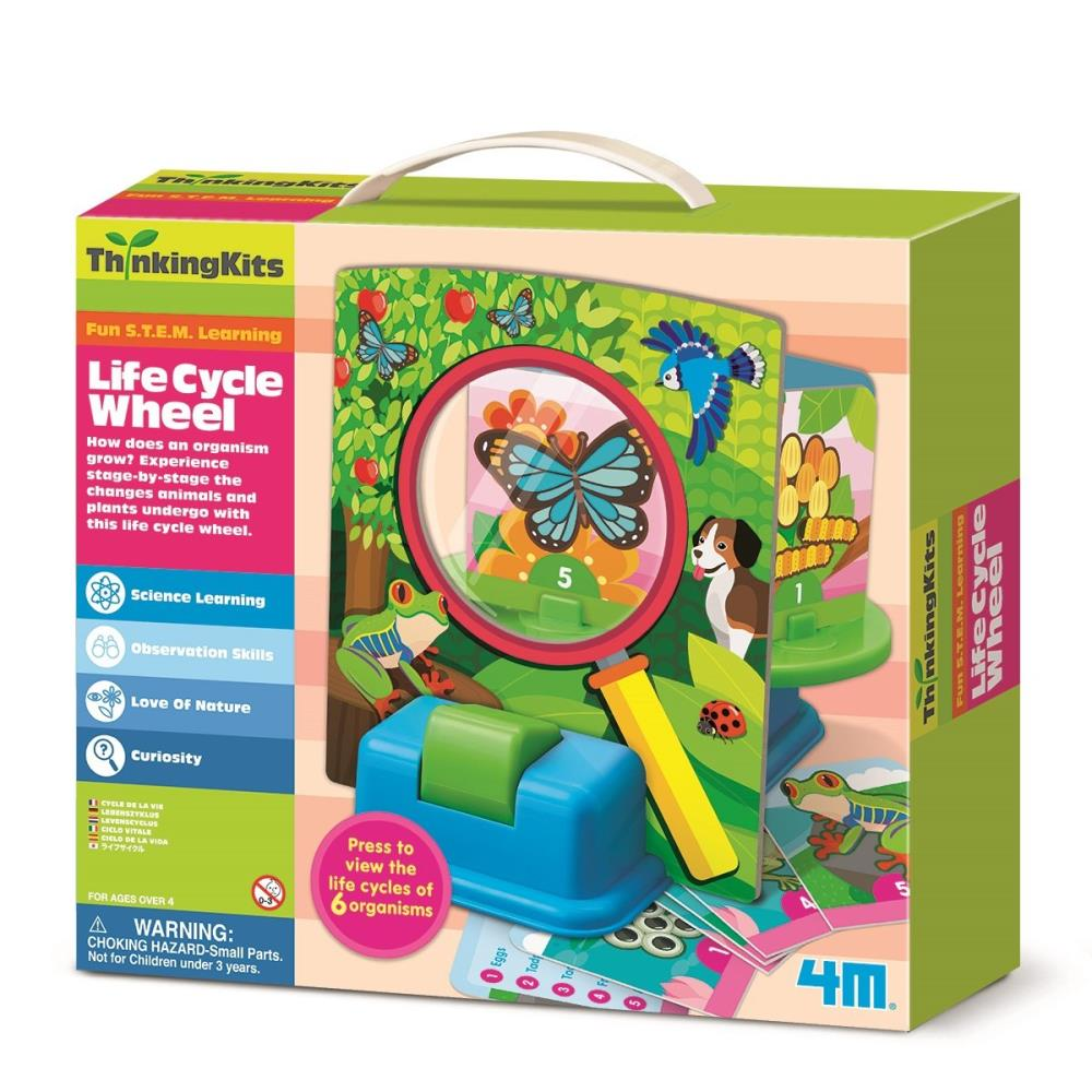 4M -  Thinking Kits - Life Cycle Wheel