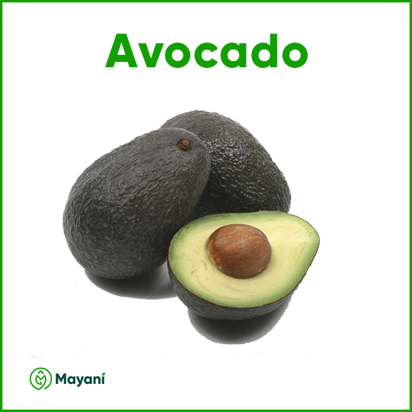 Avocado - Mayani Farm