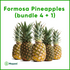 Formosa Pineapple Promo Bundle - Mayani Farm