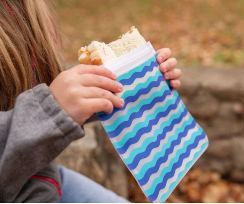Reusable 4-Piece Sandwich Bags Set- Waves