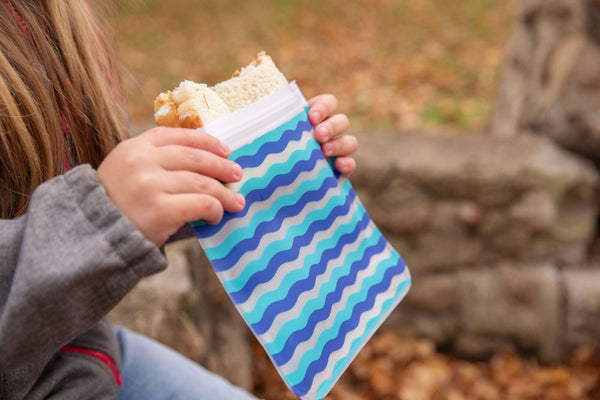 Reusable 4-Piece Sandwich Bags Set- Anchors & Waves