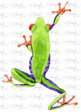 Load image into Gallery viewer, Waterslide Decal Tree Frog3