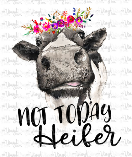 Waterslide Decal Not Today Heifer