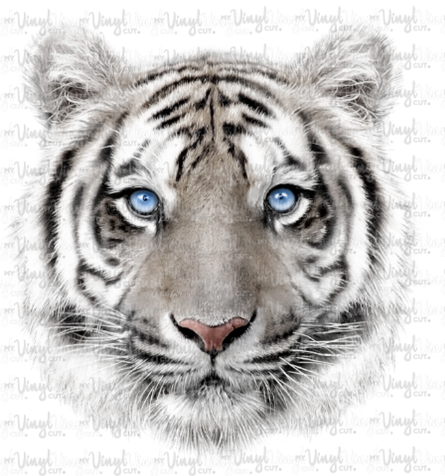 Waterslide Decal White Tiger