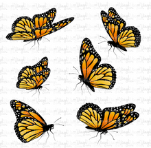 Load image into Gallery viewer, Waterslide Decal Set of 6 Orange Monarch Butterflies