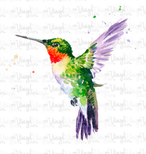 Waterslide Decal Ruby Throated Hummingbird