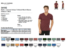 Load image into Gallery viewer, Bella Canvas Unisex Triblend Short Sleeve V Neck