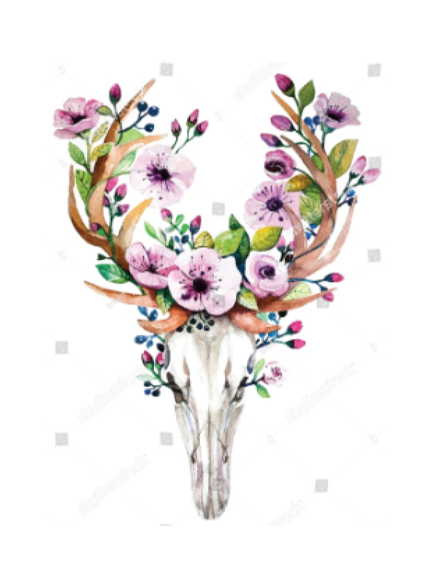 Sublimation Transfer Bohemian Deer Skull with Flowers