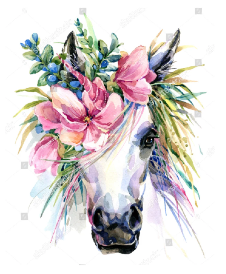 HTV Transfer Watercolor Unicorn