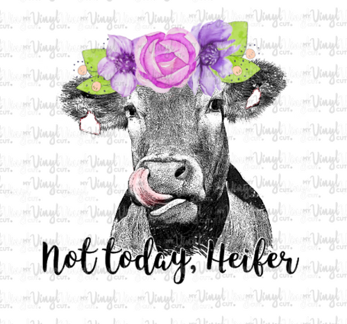 Waterslide Decal Not Today Heifer Cow licking nose with purple flowers