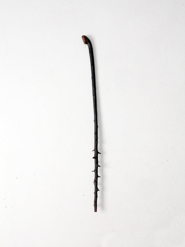 antique twig walking stick