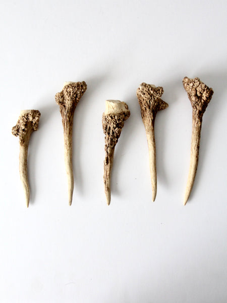 vintage deer antler point collection