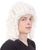 Colonial Judge Wigs  - Halloween Wigs | HPO
