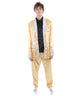Metallic Satin Vegas Elvis Costume - Halloween Costume | HPO