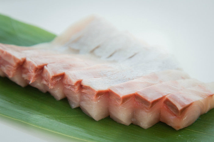 Kampachi Belly かんぱち腹 | Fish For Sushi Inc.