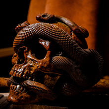 Load image into Gallery viewer, Skull with Vipers Big