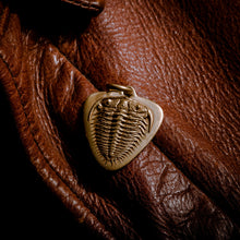 Load image into Gallery viewer, Trilobite fossil pendant