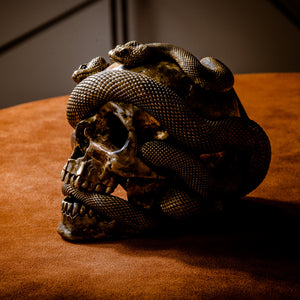 Skull with Vipers Big (Bronze)