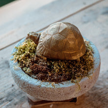 Load image into Gallery viewer, Tortoise Bowl