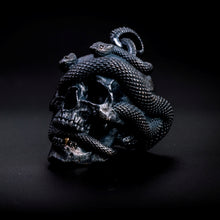 Load image into Gallery viewer, Skull with Vipers (Silver)