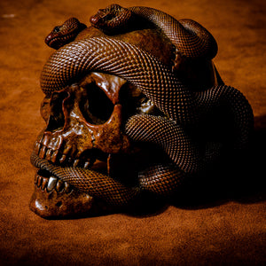 Skull with Vipers Big