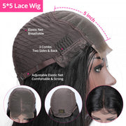 Body Wave 5*5 Lace Closure Wigs Pre Plucked Human Hair For Black Women Natural Hairline