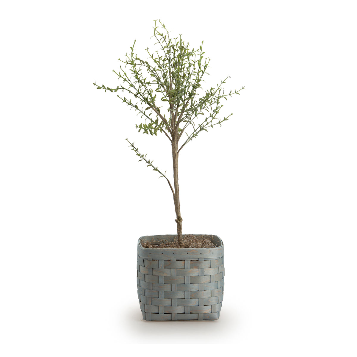 Artifical Thyme Topiary