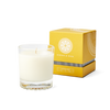 Champagne Sorbet Single Wick Candle