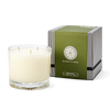 Norway Spruce Three Wick Candle
