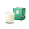 White Tea & Cedar Single Wick Candle