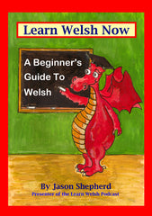 Learn Welsh Now: A Beginner's Guide to Everyday Welsh by Jason Shepherd