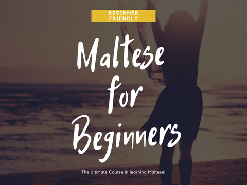 Maltese for Beginners