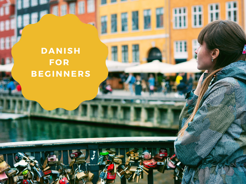 Danish for Beginners