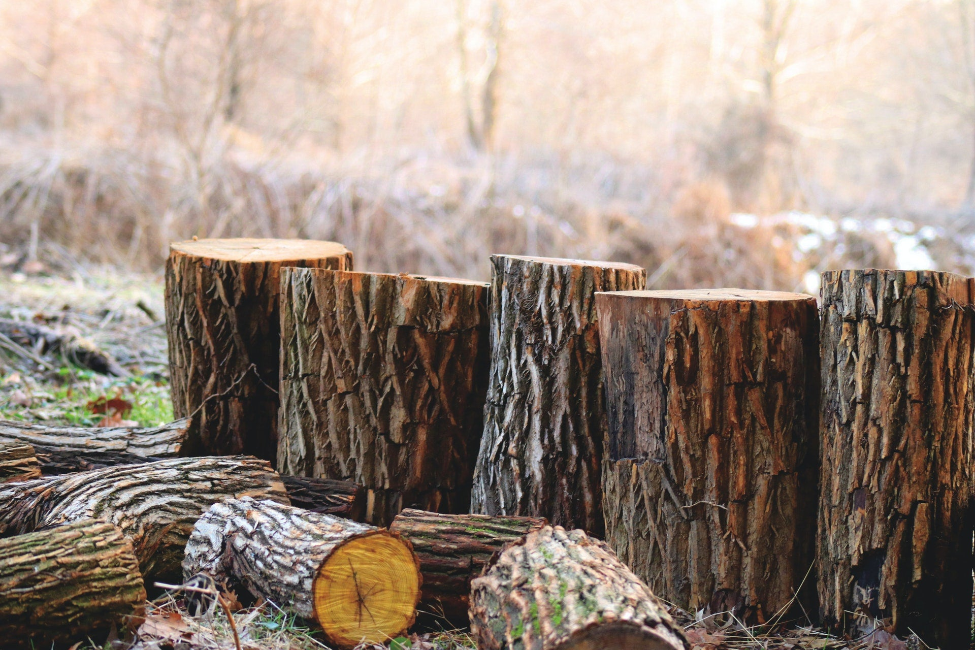 Logs for making hand crafted kitchen tools