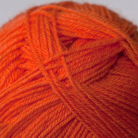 Autumn Orange 891