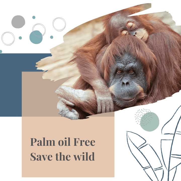 Why Palm Oil Free??