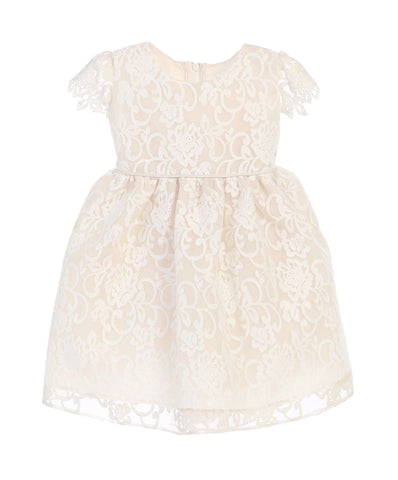 Baby Girls' Sweet Kids Classic Floral Embroidered Organza Dress - Champagne, SKB688